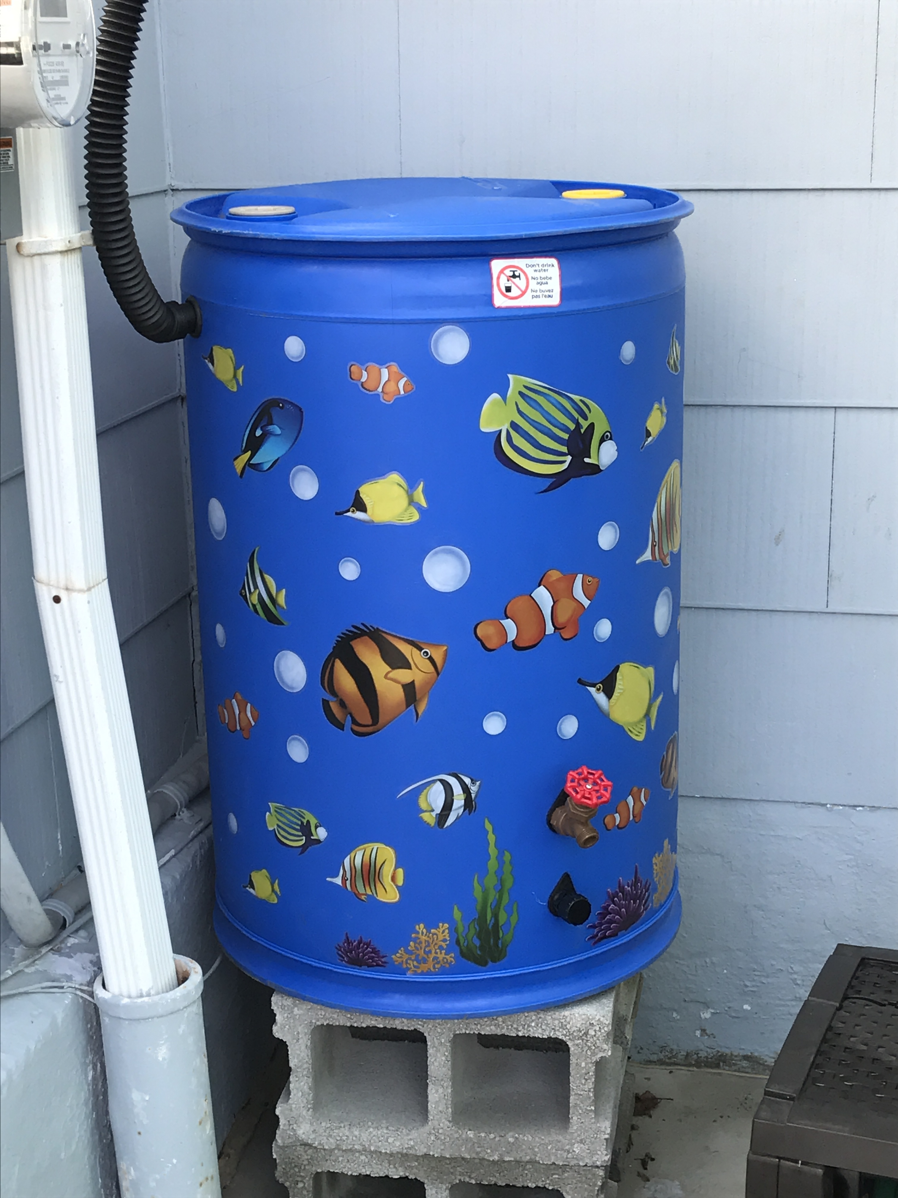 Get creative and decorate your rain barrel!