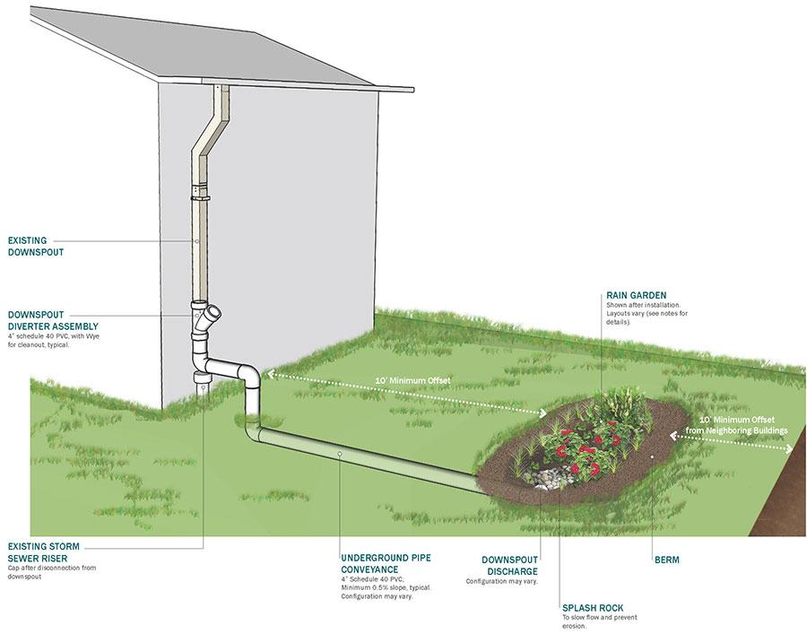 Rain Garden Diagram